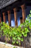 Träveranda med druvaleaves Royaltyfri Fotografi