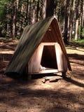 Trävigvamtält i Sherwood Forest Royaltyfria Foton