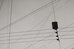 Trådar och kablar Arkivfoto