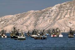 Trålare och fartyg förtöjde på Chimbote, Peru med det vita berget i bakgrund Arkivfoton