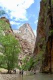 Trånga passet på Zion National Park royaltyfri fotografi