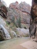 Trånga passet, Zion nationalpark, Utah Arkivfoton