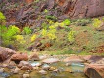 Trånga passet, Zion nationalpark, Utah Fotografering för Bildbyråer