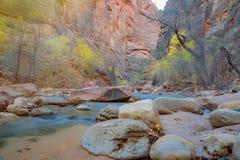 Trångt pass i Zion National Park, Utah, Förenta staterna Royaltyfri Fotografi