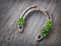 Trèfle de vieux fer à cheval rouillé et de quatre feuilles Photo libre de droits