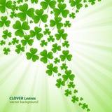 Trèfle vert illustration libre de droits
