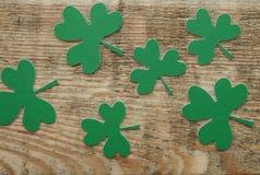 Trèfles ou oxalidex petite oseille verts Photos stock
