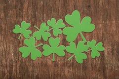 Trèfles ou oxalidex petite oseille verts Photo stock