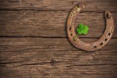 trébol Cuatro-con hojas y un zapato del caballo Imagen de archivo