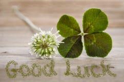 Trébol de cuatro hojas con buena suerte de la flor y del texto Fotografía de archivo libre de regalías