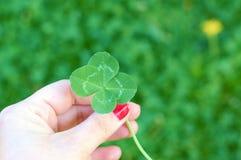 Trébol de cuatro hojas en la mano para mujer, símbolo de la buena suerte Fotos de archivo libres de regalías