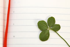 Trébol de cuatro hojas y nuevo día Fotografía de archivo