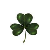 Trébol trifoliado El símbolo del día de St Patrick s Aislado en el fondo blanco Imágenes de archivo libres de regalías