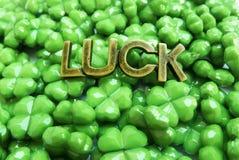 Tréboles verdes claros el chispear Foto de archivo libre de regalías
