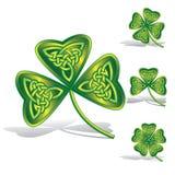 Tréboles verdes con los nudos célticos Imagen de archivo