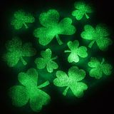 Tréboles verdes del brillo. Imagen de archivo libre de regalías
