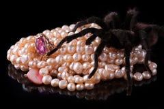 Trésor avec l'araignée Photo libre de droits