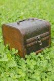 Trésor vert Image stock