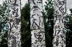 Três árvores de vidoeiro fotografia de stock royalty free