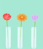 Três únicas flores ilustração do vetor