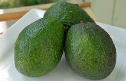 Três abacates verdes frescos Foto de Stock