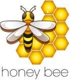 Três abelhas em uma colmeia Foto de Stock