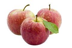 Três Apple vermelho fresco Imagens de Stock
