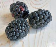 Três bagas maduras frescas da amora-preta macro Foto de Stock