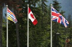 Três bandeiras canadenses Imagens de Stock Royalty Free