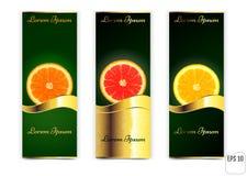 Três bandeiras com laranjas e limão em um fundo branco Vect Foto de Stock