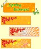 Três bandeiras da mola com flores da mola Imagens de Stock Royalty Free