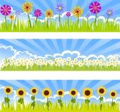 Três bandeiras florais Fotografia de Stock Royalty Free