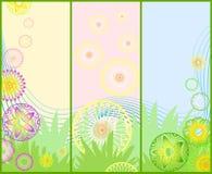 Três bandeiras florais da mola bonita diferente ilustração royalty free