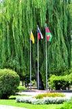 Três bandeiras no parque foto de stock royalty free