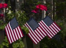 Três bandeiras pequenas em um potenciômetro de flor fotografia de stock