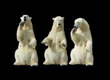 Três bisbolhetices Fotografia de Stock Royalty Free