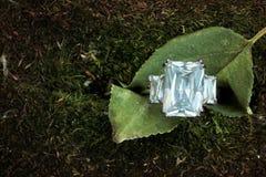 Três bonitos aliança de casamento de pedra do acoplamento do diamante em uma folha imagens de stock royalty free