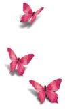 Três borboletas de papel decorativas cor-de-rosa Fotos de Stock Royalty Free
