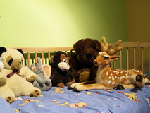 Três brinquedos Fotografia de Stock