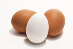 Três Brown e ovos brancos Foto de Stock