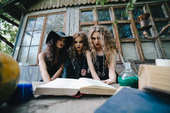 Três bruxas do vintage executam o ritual mágico fotografia de stock royalty free