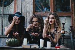 Três bruxas do vintage executam o ritual mágico Foto de Stock Royalty Free