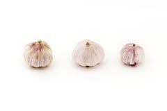 Três bulbos novos frescos do alho isolados ordenadamente no fundo branco imagens de stock