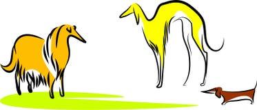 Três cães Ilustração do Vetor