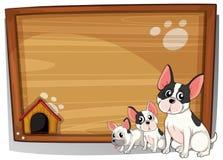 Três cães na frente de uma placa de madeira Foto de Stock