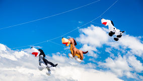 Três cão-como os papagaios que voam no céu imagens de stock