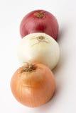 Três cebolas Imagens de Stock