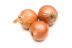 Três cebolas Foto de Stock