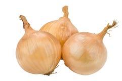 Três cebolas Imagem de Stock Royalty Free