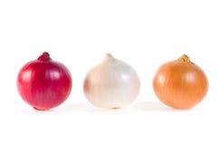 Três cebolas frescas Foto de Stock